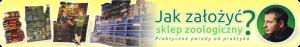 web_JAK-ZALOZYC_header
